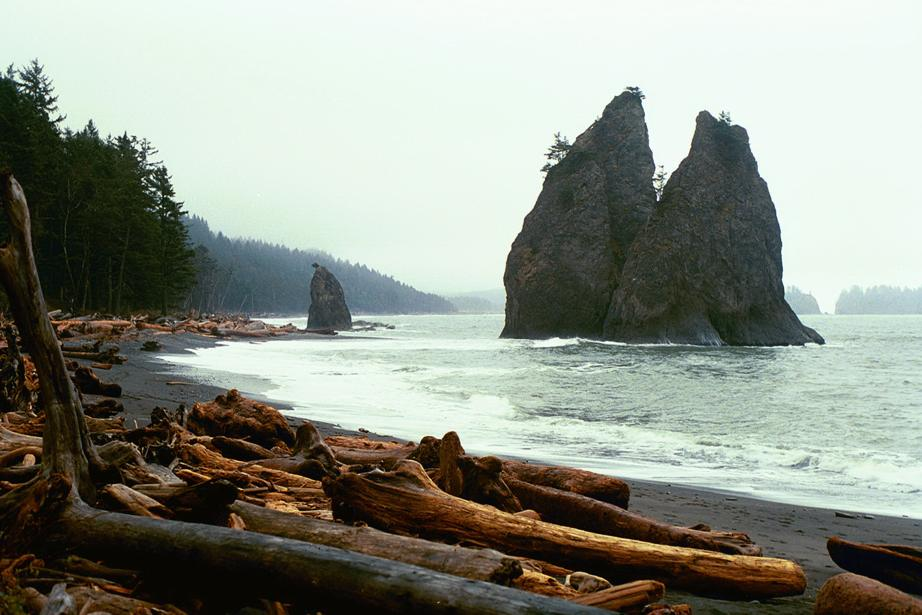The Pacific coast of Washington in Olympic National Park.