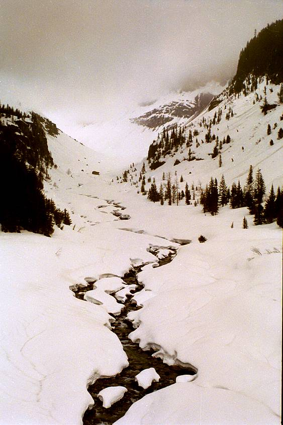 A creek on the slopes of Mt Ranier.